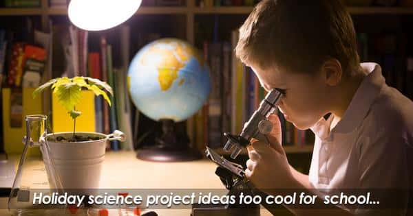 Science Project Ideas For Energy Conservation And Recycling